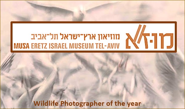 Wildlife Photographer of the year<BR/>2018